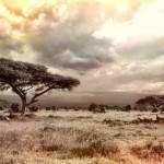 Exotické dovolenky v Keni.